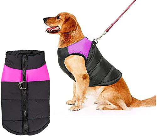 Shinmax giacca impermeabile cani di piccola taglia, foderata in pile il calore protezione il petto palla imbottita per animali domestici cucciolo gilet l'autunno inverno