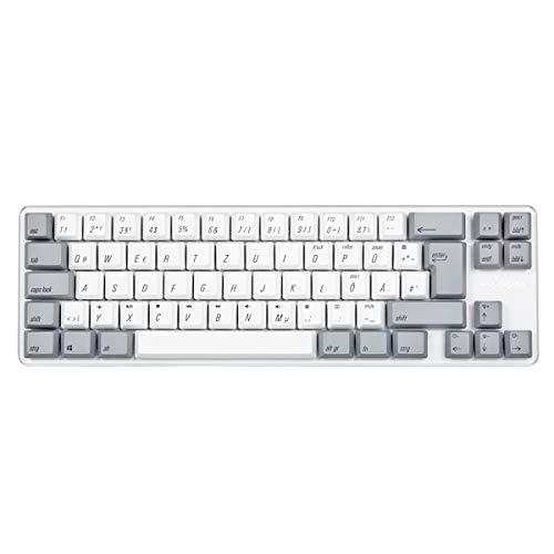 Qisan Mechanische Gaming-Tastatur PBT-Keycaps 69 Tasten Gateron Brown Switch Weißes Hintergrundlicht German QWERTZ Layout Gaming-Tastatur-Weiß Grau Combo