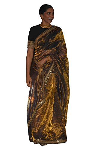 Pramukh Enterprise Women's Tissue Silk Multi Work Saree(HFPBT-161_Beige)