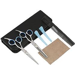 LIHAO Kit Ciseaux de Coiffure Coiffeur, Ciseaux Barber Salon en Acier Inox pour Cheveux