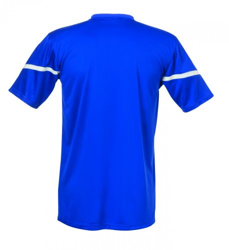 uhlsport Trikot Team Kurzarm royal/weiß