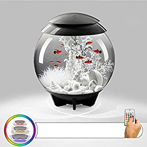 30L Aquarium Fish Tank Starter Kits with LED Light Spherical Ecological Fish Tank Desktop Fish Tank Aquarium-LED-1