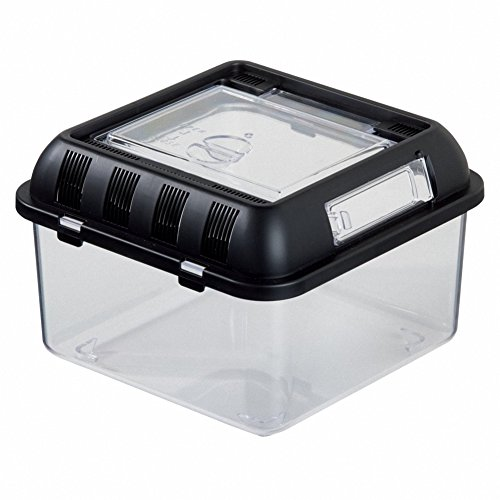Reptile Zucht Box omem Reptile Box, Brutplatz Box, geeignet für Schlangen, Eidechsen, Löwen Mähne, Reptilien