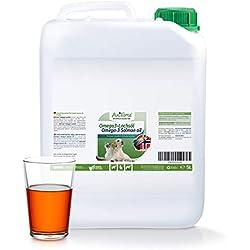 AniForte Omega-3 Lachsöl 5 Liter für Pferde, Hunde und Katzen, Kaltgepresst, Reich an EPA, DHA und ALA Fettsäuren, Natur Pur, Barf Ergänzung