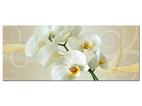GRAZDesign 100010_002_01_04 Wandbild Orchidee | Blumige Wand-Deko für Wohnzimmer | Glasbild aus Acrylglas (125x50cm)