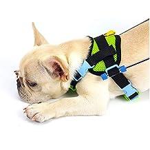 Carrito para perros, adecuado para la práctica de mascotas, rehabilitación, lesiones asistidas,