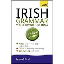 Irish Grammar You Really Need to Know: Teach Yourself