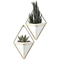 Umbra 470753-524 Trigg 2 Vasi Piccoli Decorativi, Bianco Rame