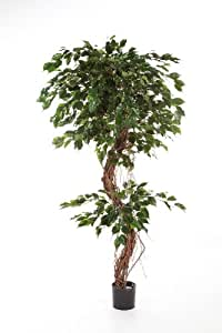 Ficus Exotica artificiel en pot, 1375 feuilles, vert, 180 cm - ficus synthétique / arbuste artificiel - artplants