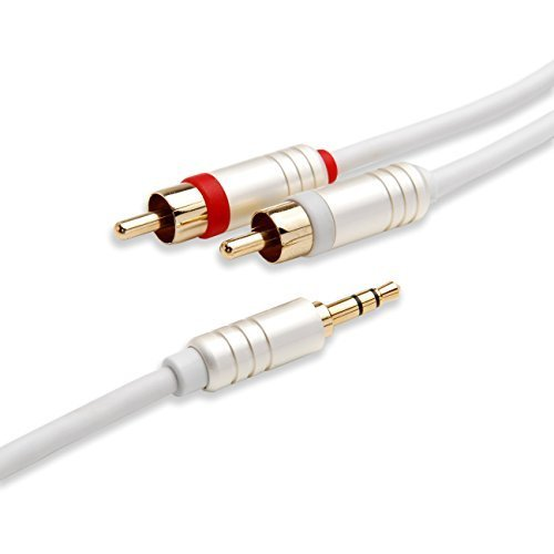 BlueRigger 3.5mm to RCA (2) Stereo Audio Cable