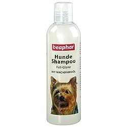 beaphar Hunde Shampoo Fell-Glanz | Hundeshampoo für glänzendes Fell | Mit Macadamiaöl | Fellpflege für Hunde | pH neutral | Gegen schlechten Geruch | 250 ml
