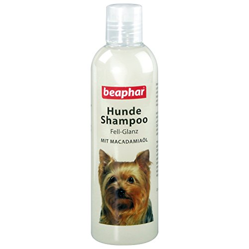 beaphar Hunde Shampoo Fell-Glanz | Hundeshampoo für glänzendes Fell | Mit Macadamiaöl | Fellpflege für Hunde | pH neutral | Gegen schlechten Geruch | 250 ml -