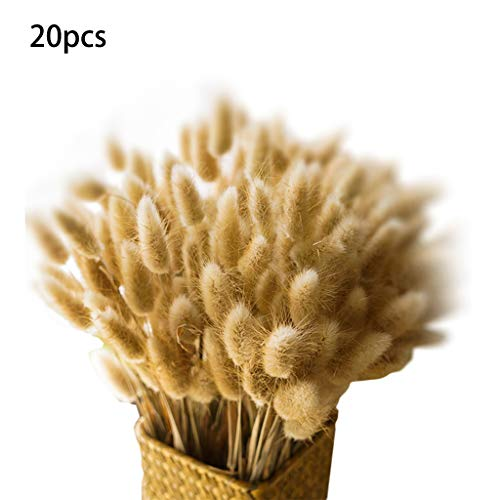Vxhohdoxs - 20 rami di fiori essiccati, naturali, stile rustico, decorazione per matrimoni