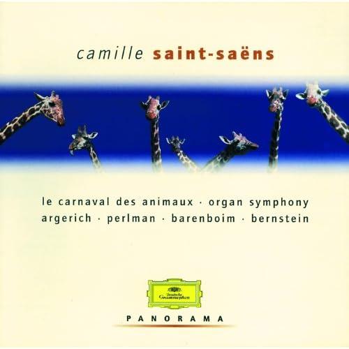 Saint-Saëns: Symphony No.3 In C Minor, Op.78, R. 176 - 1. Adagio - Allegro moderato - Poco adagio, Op. 78, R. 176