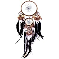 Dreamcatcher with coloured net by Artwork Indian