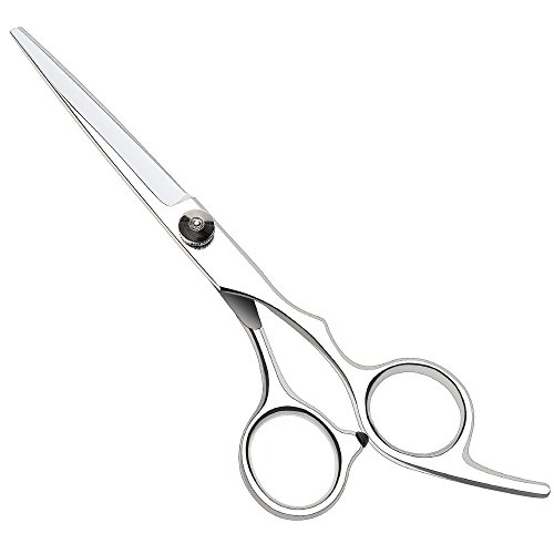 Professional Hairdressing Scisso...
