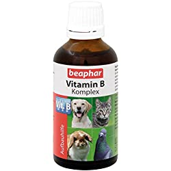 beaphar Vitamin-B-Komplex | B-Vitamine für Hunde, Katzen, Nager, Vögel | Zur Fellpflege von Haus-Tieren | Für EIN Gutes Wohlbefinden | Vitamin-Tropfen 50 ml