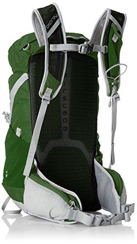 Osprey Talon 18 - Wanderrucksack shamrock green