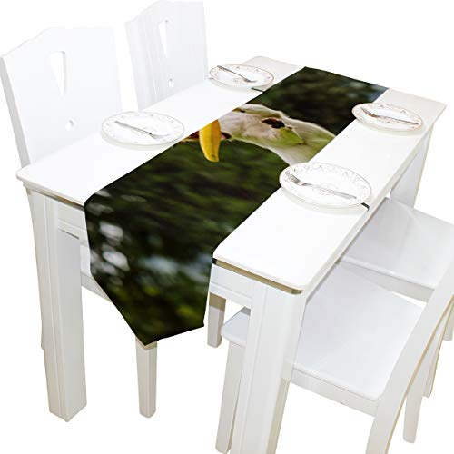 Yushg Hund Fangen Fliegende Scheibe Kommode Schal Tuch Abdeckung Tischläufer Tischdecke Tischset Küche Esszimmer Wohnzimmer Hause Hochzeitsbankett Decor Indoor 13x90 Zoll