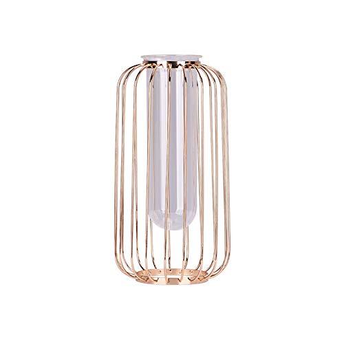 egante dekorative Metallkäfig Frame Stand mit Zylinder klar Vasen für Home Office Hochzeit Mittelstücke Dekor Rose Gold ()