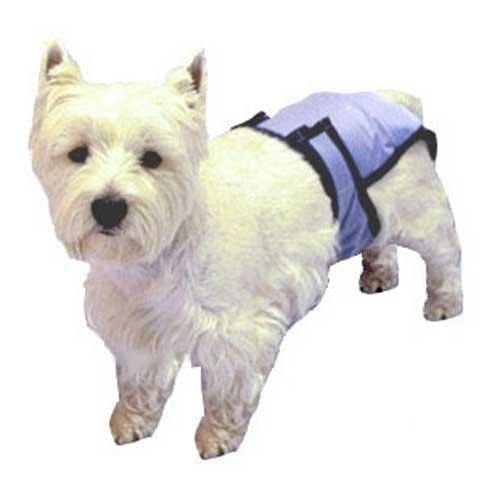 Artikelbild: PoochPants Reusable Dog Diaper-Large-33 To 55lbs