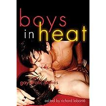 Boys In Heat: Gay Erotic Stories (English Edition)
