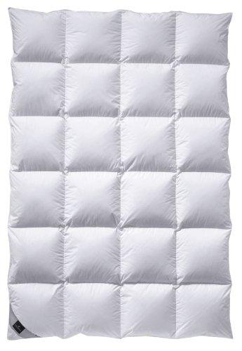 Preisvergleich Produktbild Billerbeck 4536390003 Daunendecke 306 Nena Kassette VI, 155 / 220 cm weiß