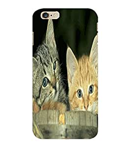 ColourCraft Cute Kittens Design Back Case Cover for APPLE IPHONE 6 PLUS
