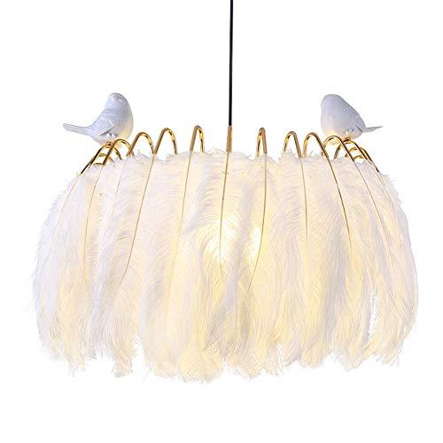 AQUYY Weißer Federleuchter Für Wohnzimmer, Kinderzimmer, Warme Romantische Schlafzimmerlampe, Innendekoration-Beleuchtung A-40x60cm -