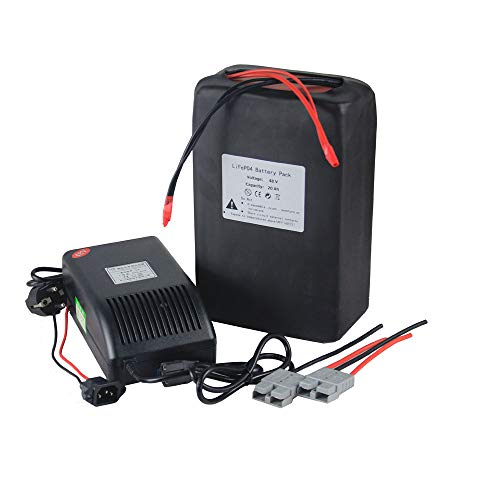 BtrPower 48v 20Ah Lithium Batterie Satz LiFePO4 für elektrischen Fahrrad Roller mit Ladegerät 5A 1000W Motor