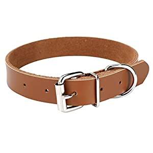 Pets Empire PU Leather Dog Pet Collar, Waterproof- Adjustable for Small Cats and Puppy Dog - 1 Piece Color May Vary