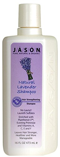4Stück x Jason reinen, natürlichen Volumen Shampoo Lavendel-16Fl Oz - Jason Natural Lavendel Shampoo