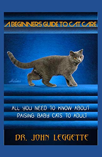 A BEGINNERS GUIDE TO CAT CARE: All you need to know about raising baby cats to adult -