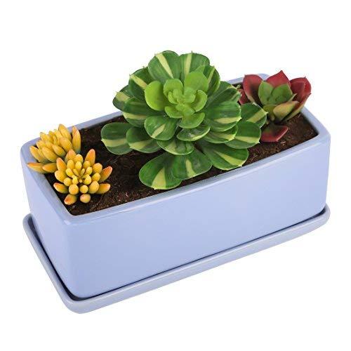 Pure.Lifestyle Blumentopf, 2-teilig Set Kräutertopf, Rechteckig, Blau