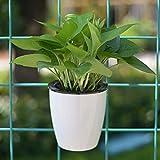 Attrezzi da giardinaggio Vasi di fiori pigri Materassini di plastica auto-assorbenti automatici della resina del ravanello verde Hydroponics vasi di fiori di plastica della resina circolare-appesi,
