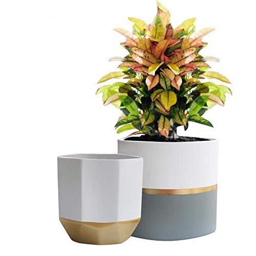 Photo Gallery la jolie muse vasi da fiori in ceramica vasi per piante da interno e da esterno decorazioni per l ufficio fioriera da soggiorno confezione da 2 vasi rotondi e pentola ottagonale 16,5 cm