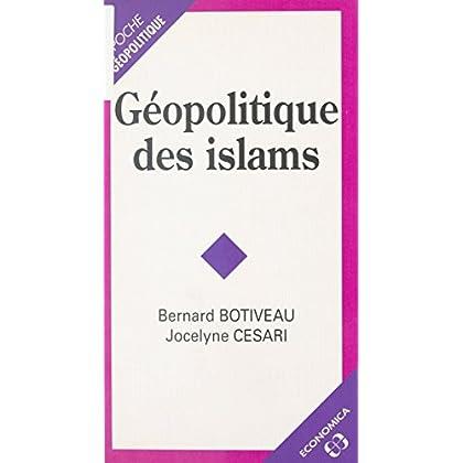 Géopolitique des islams (Geopolitique-poche t. 8)