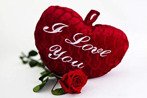Rosen-Te-Amo - Infinity rote Rose (55 cm) mit flauschigem Herz und Grußkarte zum Herunterladen; Konservierte Blumen - Geschenk Set für zärtlichen Moment