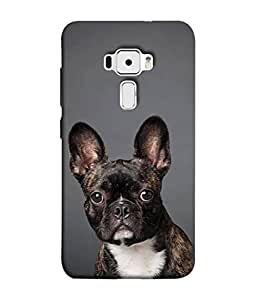 Fuson Designer Back Case Cover for Asus Zenfone 3 ZE552KL (5 Inches) (walk when I want to fly will )