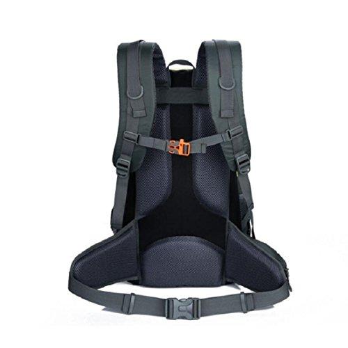Z&N Backpack 40-50L KapazitäT Bergsteigen GepäCk Tasche Outdoor Wandern Unisex Rucksack Laptop Tasche Student Tasche Geeignet FüR Urlaub Reiten Schwimmen Fitness D