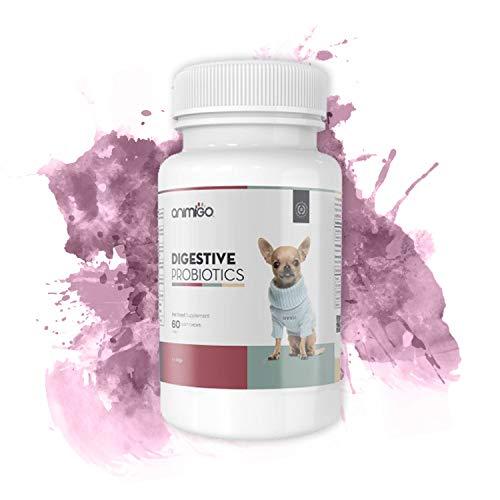 Animigo Probiotici Digestivi per Cani - 60 Capsule - con Batteri Buoni per Facilitare la Digestione