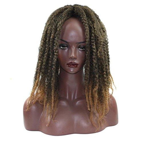 URSING Cheveux synthétiques de gradient de torsion de tresse de cheveux de perruques d'extensions de cheveux de gradient Perruque Kinky Curly Afro Bouclés Lace Front en Fibre Synthétique Long Curly Top Qualité pour les Femmes Femmes longues Bouclées Ondulé Haute Qualité Résistant à La Chaleur Synthétique Comme les Vrais Cheveux Humains (43cm, E)