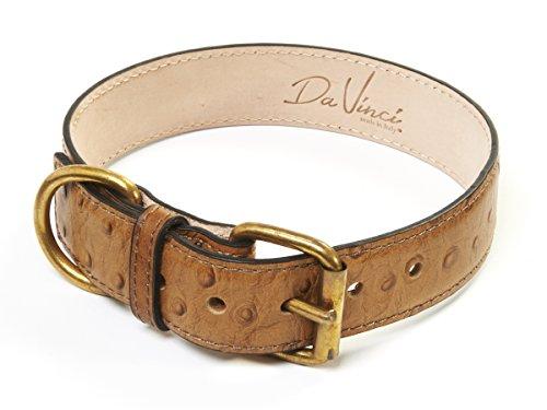 Da Vinci Lucrezia Leder Hundehalsband mit Strauß Design, 60cm Preisvergleich