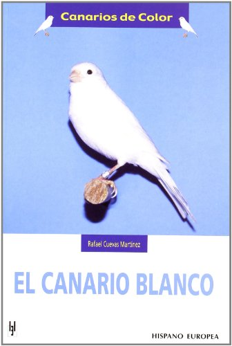 El canario blanco (Canarios de color) por Rafael Cuevas Martínez