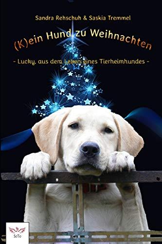 (K)ein Hund zu Weihnachten: Lucky, aus dem Leben eines Tierheimhundes