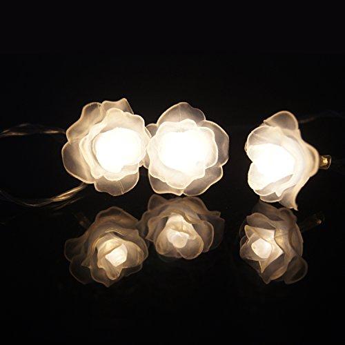 acrato 20catena luminosa LED 20Rose fiori illuminazione LED funzionamento a batteria 2Meter per inner campo bianco caldo