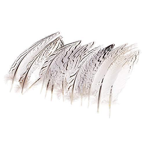 atürliche Fasan Federn Flügelfeder Natur Dekoration Hahnenfedern für Kostüme, Hüte, basteln, Zuhause Deko ()