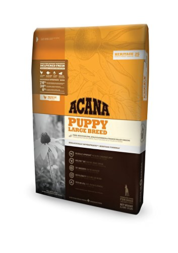 acana-puppy-large-breed-offerta-114-kg