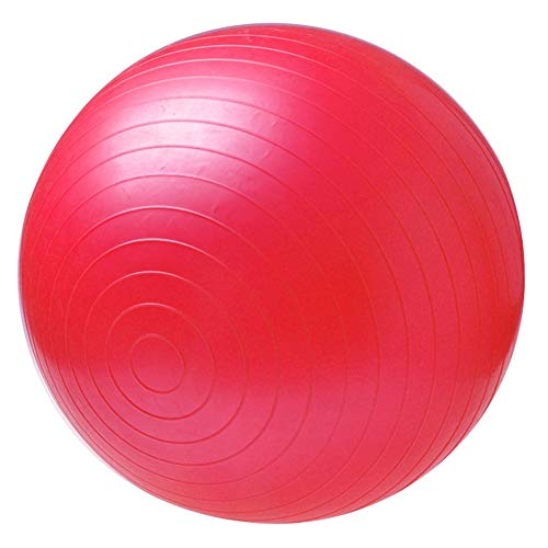Silverkial Palla Fitness Palle Yoga Bola Pilates Fitness Palestra Equilibrio Fitball Esercizio...