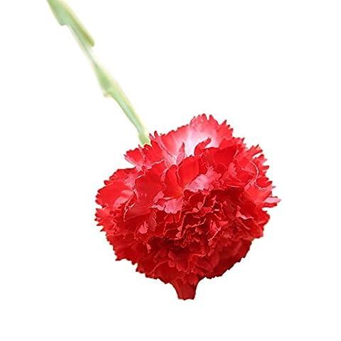 Hlhn Fleurs Artificielles Faux œillets Décor floral bonsaï pour Office Home bureaux des Tables de jardin bouquets de mariage pour usage extérieur